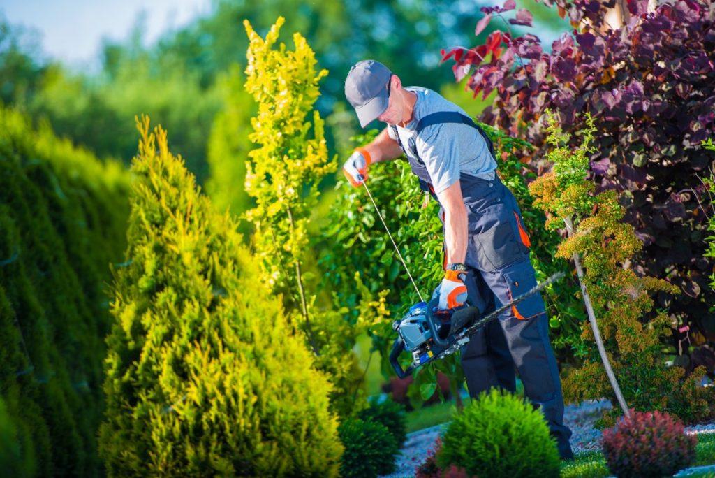 Projektowanie ogrodów Olsztyn
