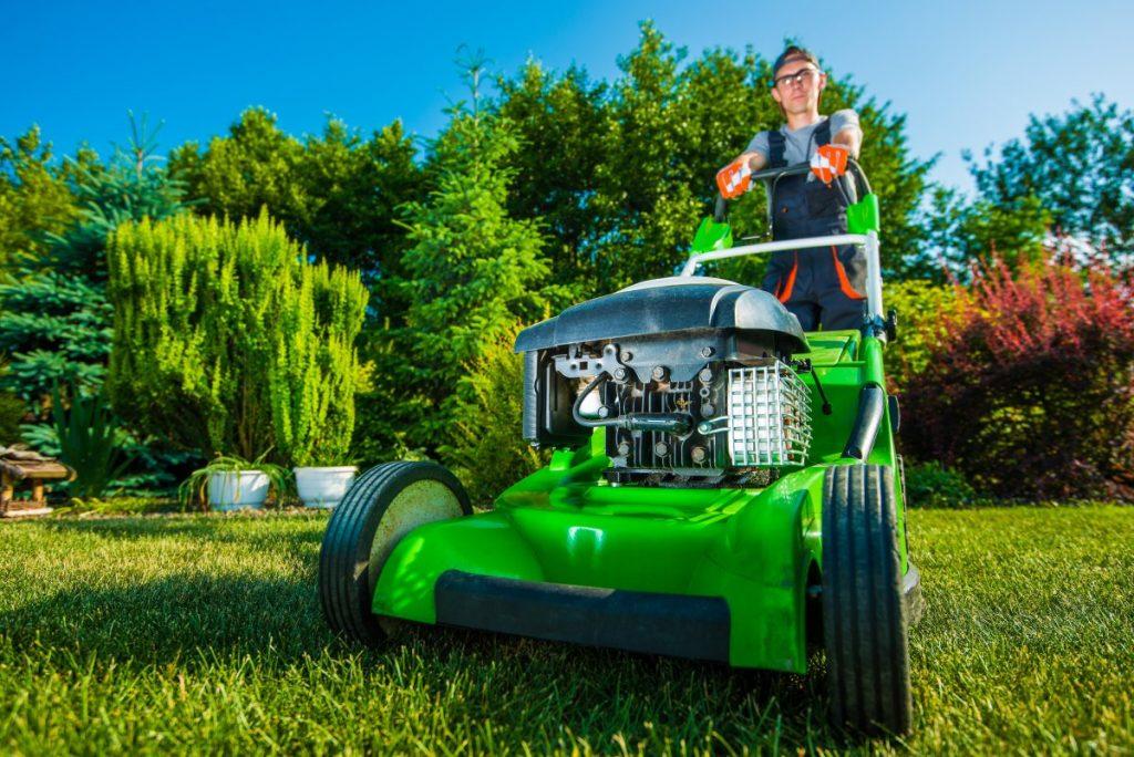 Zakładanie trawników Olsztyn